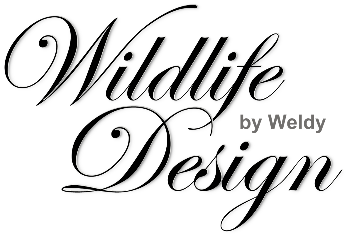 Wildlife-Design
